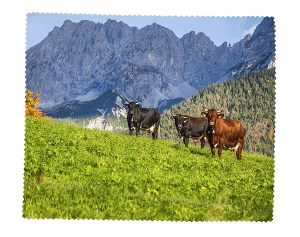 Kühe vor Wörner