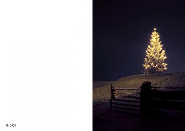 Weihnachtskarte Nr. 2925