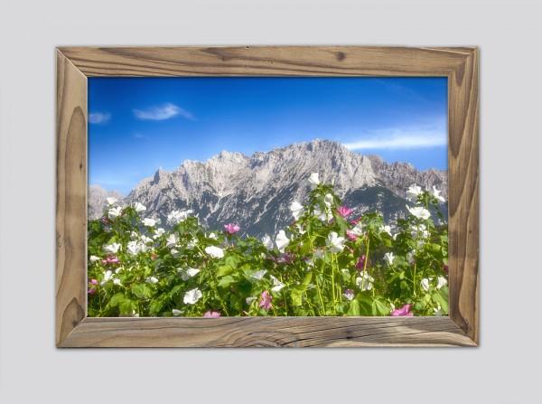 Blumenmeer-mit-Karwendel-im-Altholzrahmen