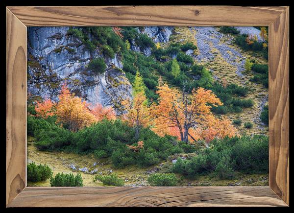 Leuchtendes-Herbstlaub-im-Altholzrahmen
