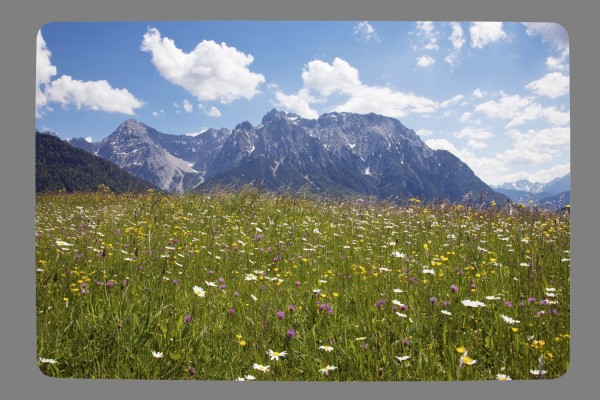 Fußmatte Sommerblumen