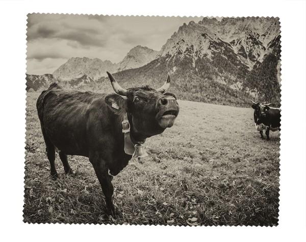 Brillenputztuch muhende Kuh