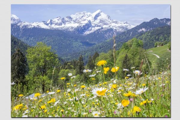 Tischset Alpspitze im Frühling