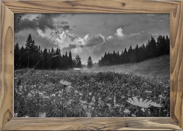 Sommerblumen-Elmauer-Tal-Altholzrahmen