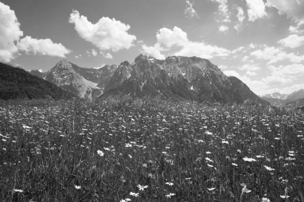 MIttenwalder Buckelwiesen