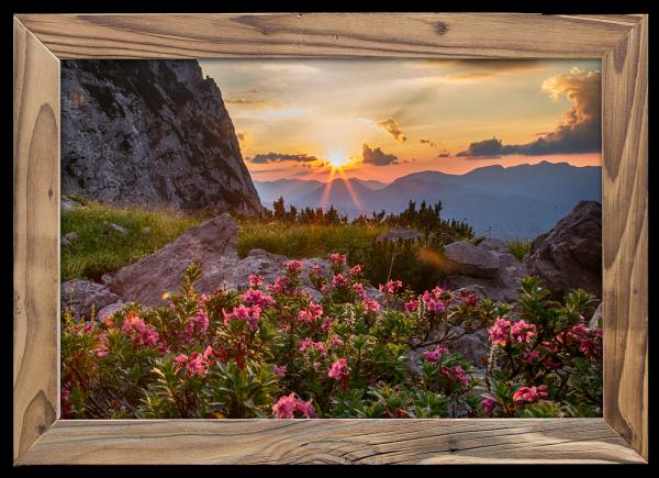 alpenrosen-dammkarhütte-altholzrahmen