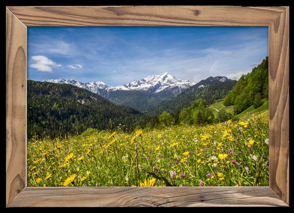 Sommerwiese-Alpspitzblick-Altholzrahmen