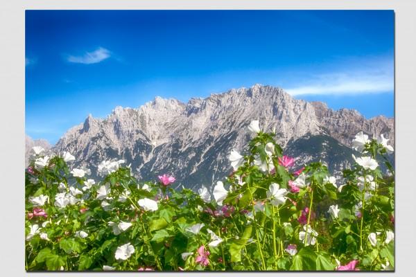 Tischset Blumen und Karwendel