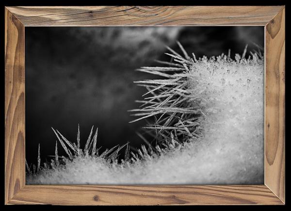 Eisnadeln-schwarzweiß-altholzrahmen