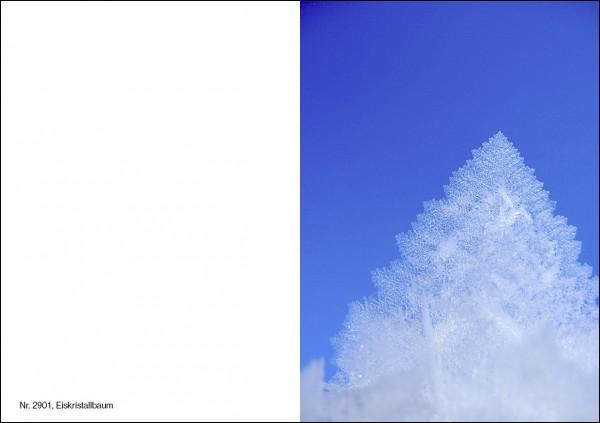 Weihnachtskarte Nr 2901