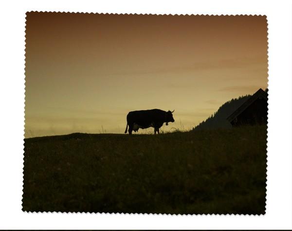 Brillenputztuch einsame Kuh