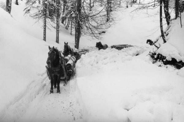 holzfuhrwerk-im-winter-leinwand