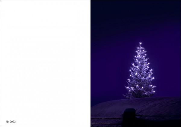 Weihnachtskarte Nr. 2923