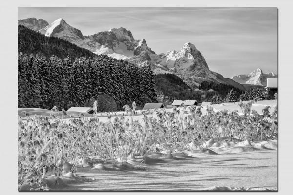 Stoffset Alpspitze und Waxenstein in schwarzweiß