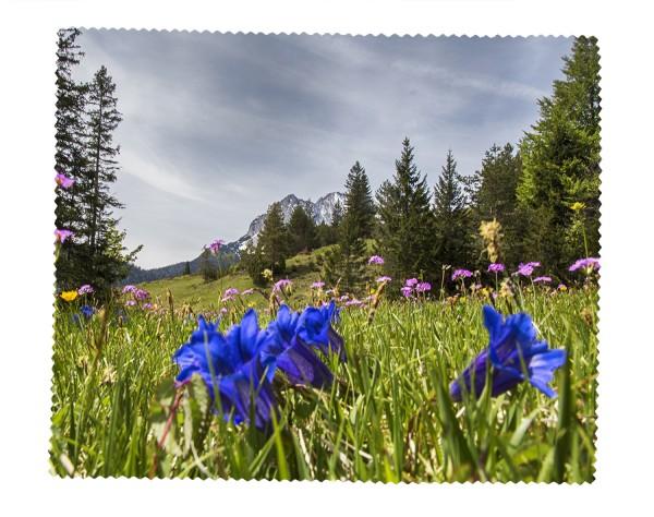 Enzianblüte mit Wettersteinblick